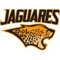 Maillot Jaguar Rugby 2019 / Nike