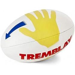 Ballon Rugby pédagogique école / Tremblay
