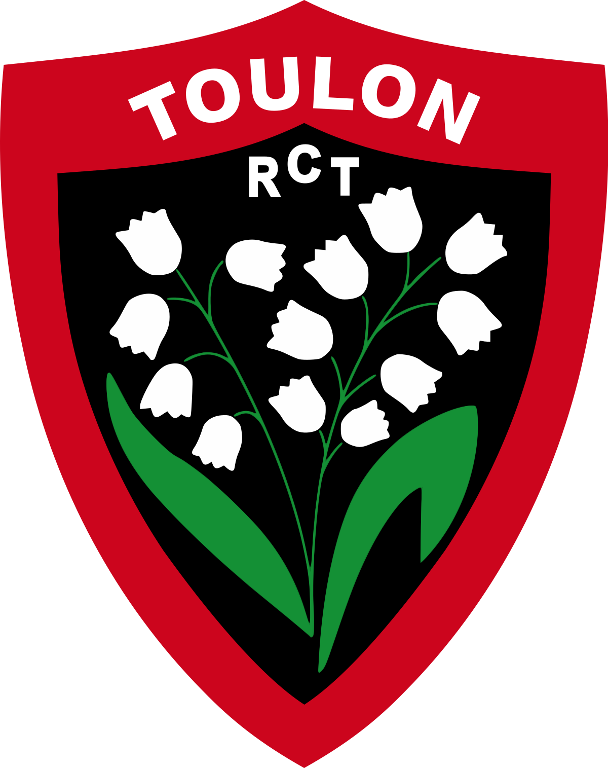 Boutique Rugby Toulon - RCT